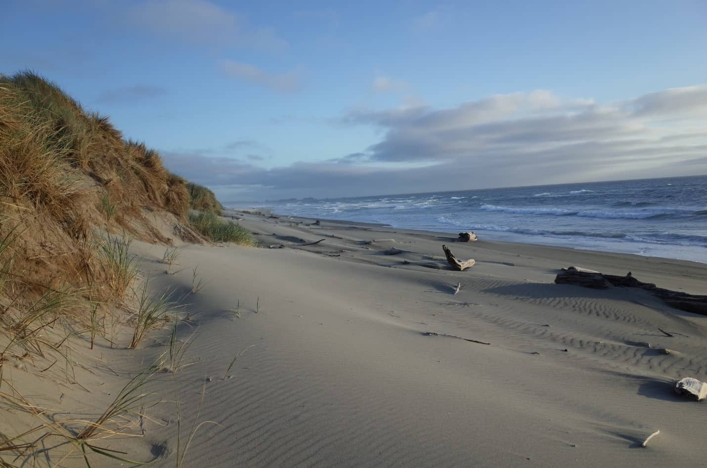 bullards beach oregon horseback riding