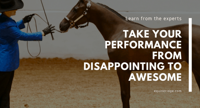 horse show tips from the pros