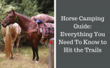 Horse camping guide for equestrian trail riding