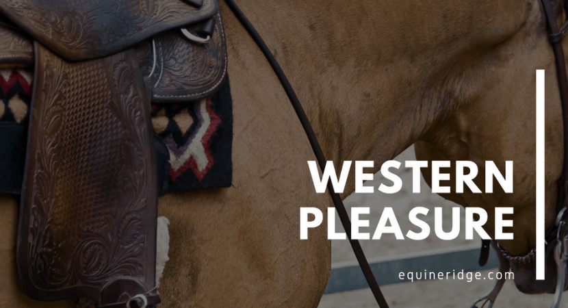 western-pleasure-riding