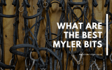 Here are the best Myler Bits for horseback riding