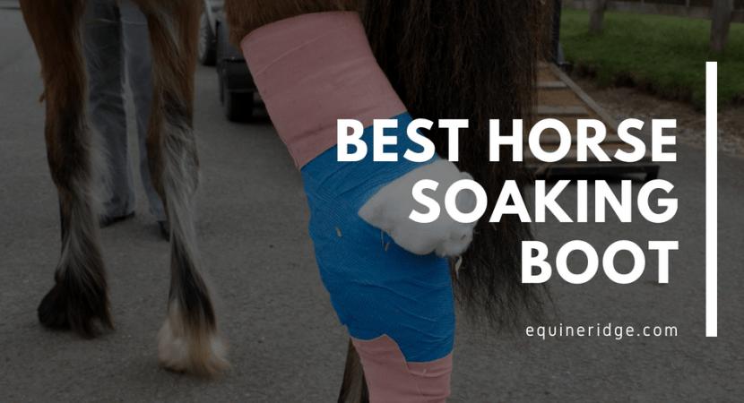 Best horse soaking boot