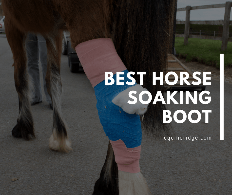Best horse soaking boot