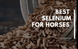 best selenium and vitamin e for horses