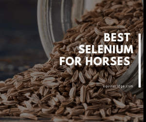 best selenium and vitamin e for horses