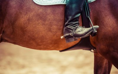 close up of horseback rider boots on horse
