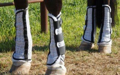 horse leg wraps closeup