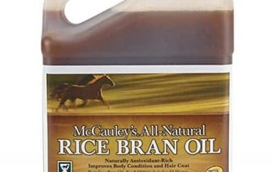 rice bran for horses