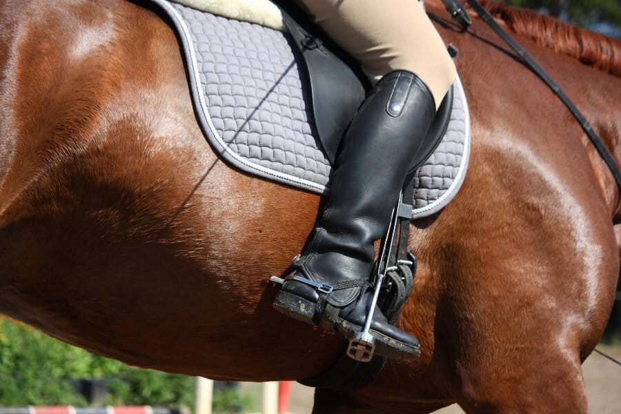 best horse riding breeches