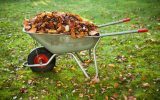 a best wheelbarrow pick loaded with leaves