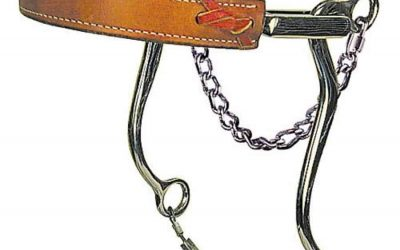 bitless bridles and hackamore
