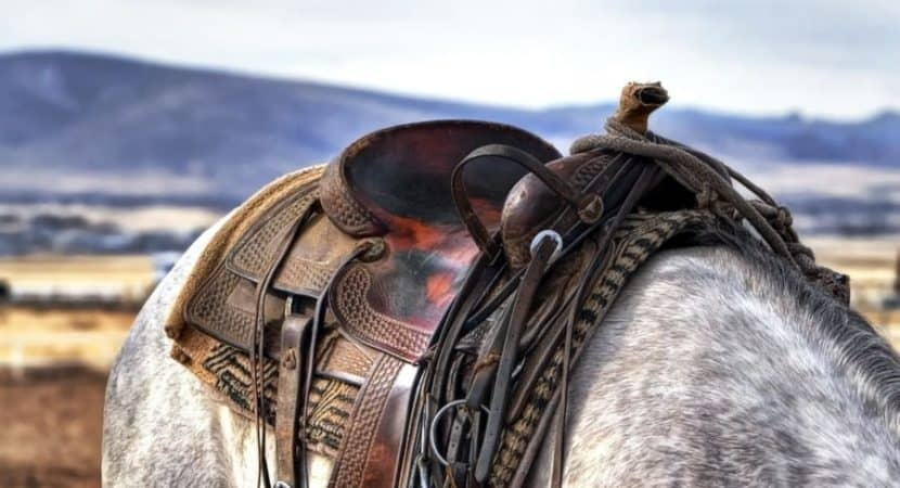 how to properly saddle your horse